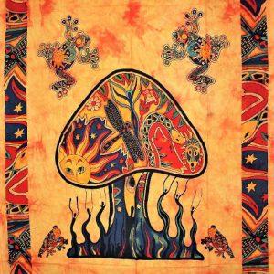 לונג הפטרייה הקסומה