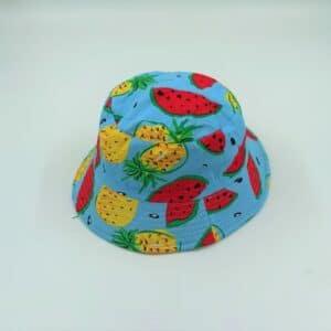 כובע טמבל אננס ואבטיח על צבע תכלת